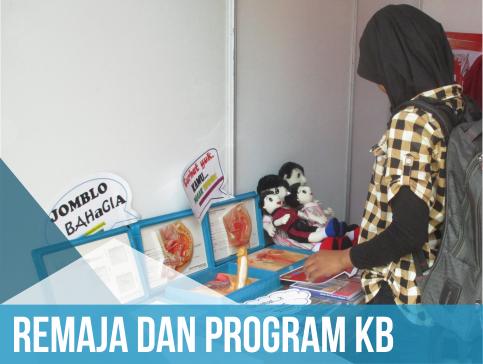 Remaja n program KB