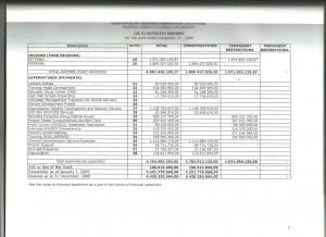 D-AUDIT 2009-laporan aktivitas